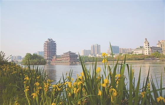 蓝天白云下的城市地标——远景楼,在多彩春景的衬托下更是平添几分